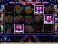 Bars and Stripes Money Slot Game made by Microgaming
