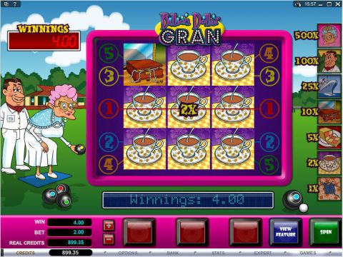 Billion Dollar Gran Real Slot made by Microgaming