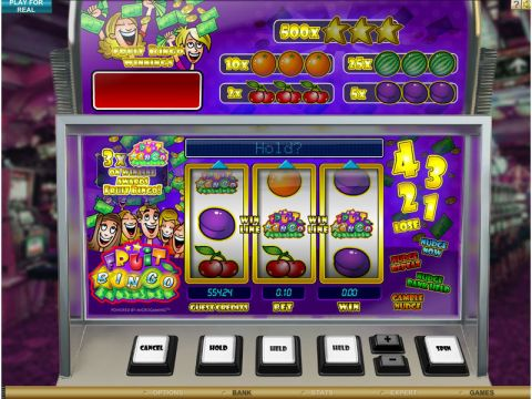 Fruit Bingo Real Slot made by Microgaming