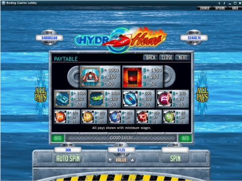 Hydro Heat Real Slot made by RTG