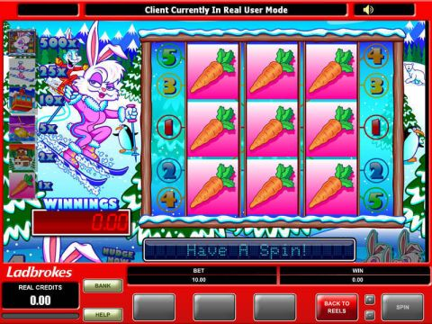 Ski Bunny Real Slot made by Microgaming