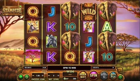 Stampede Real Slot made by BetSoft