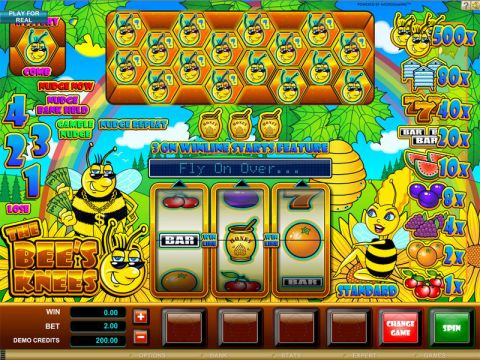 The Bees Knees Real Slot made by Microgaming
