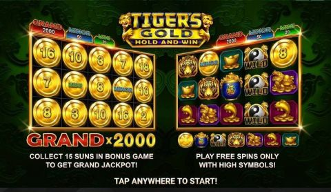 Tiger's Gold: Hold and Win Real Slot made by Booongo