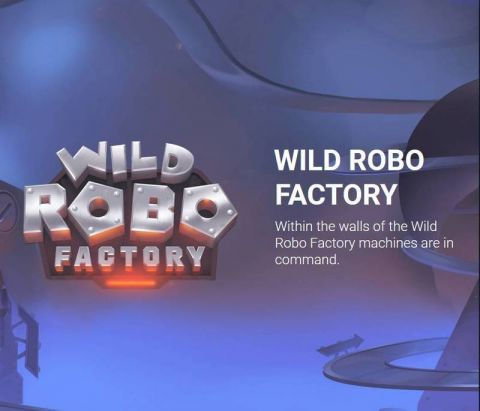 Wild Robo Factory Real Slot made by